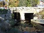 Gray's Mill 130: Bridge and Fish Ladder